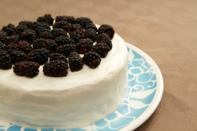 Vanilla sponge with milk and buttercream icing and blackberries.