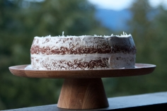 Gluten Free Chocolate cake with coconut cream whipped icing and coconut on top.